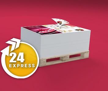 Impresión de Pliegos Express