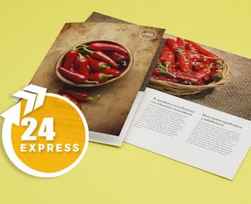 impresion para Díptico A4 Express