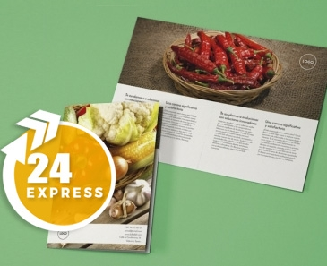 impresion para Díptico A5 Express